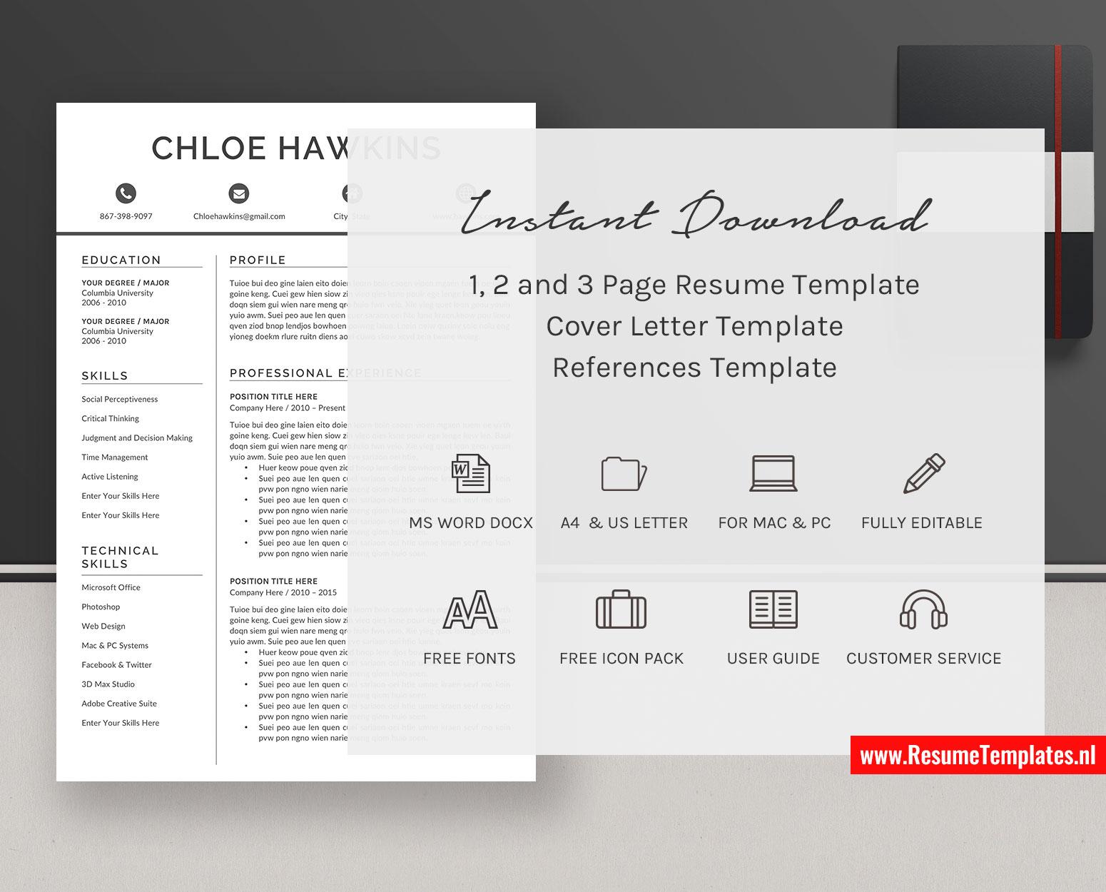 Professional Curriculum Vitae Format from www.resumetemplates.nl