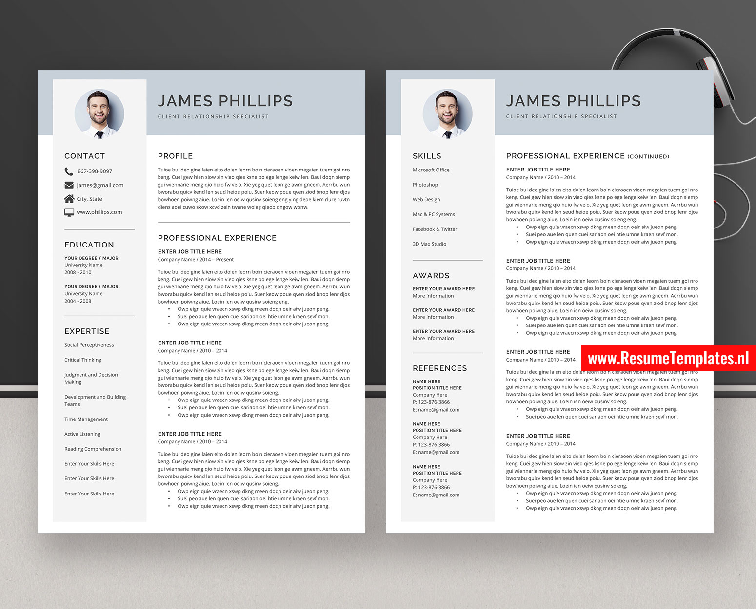 Cv Template Resume Template For Ms Word Professional Curriculum