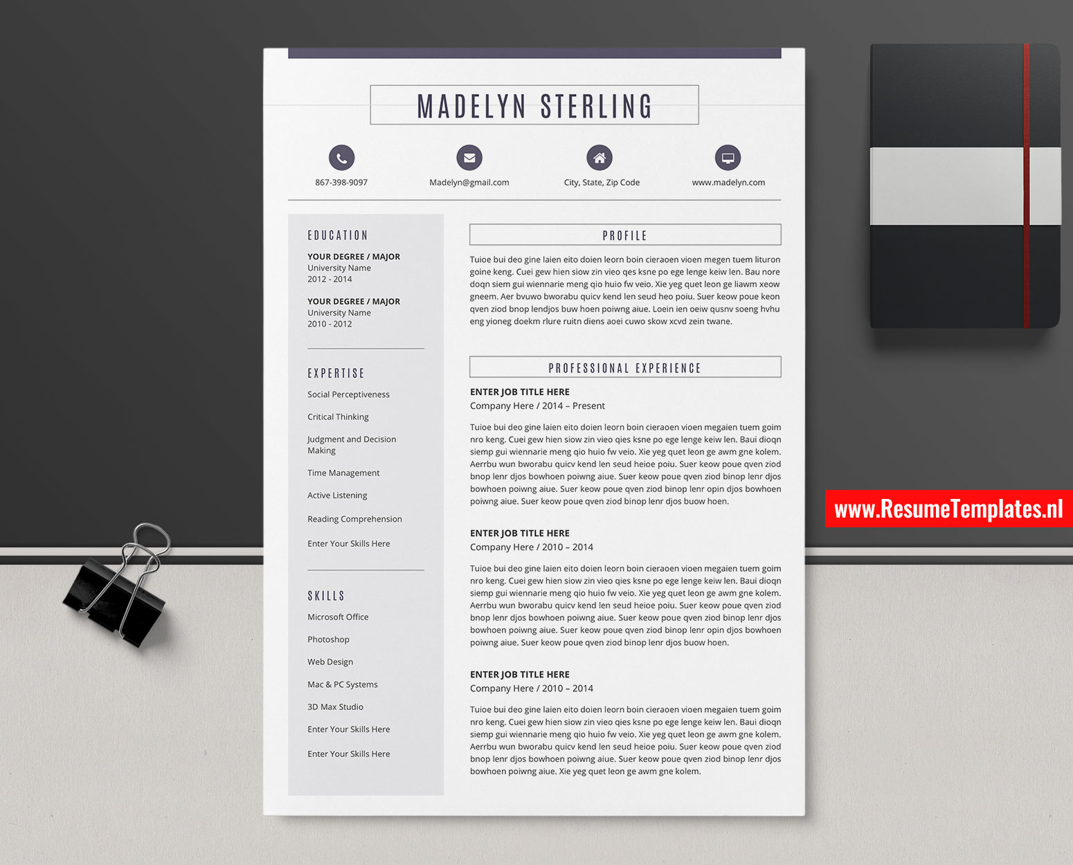 Professional Cv Template Resume Template Cover Letter