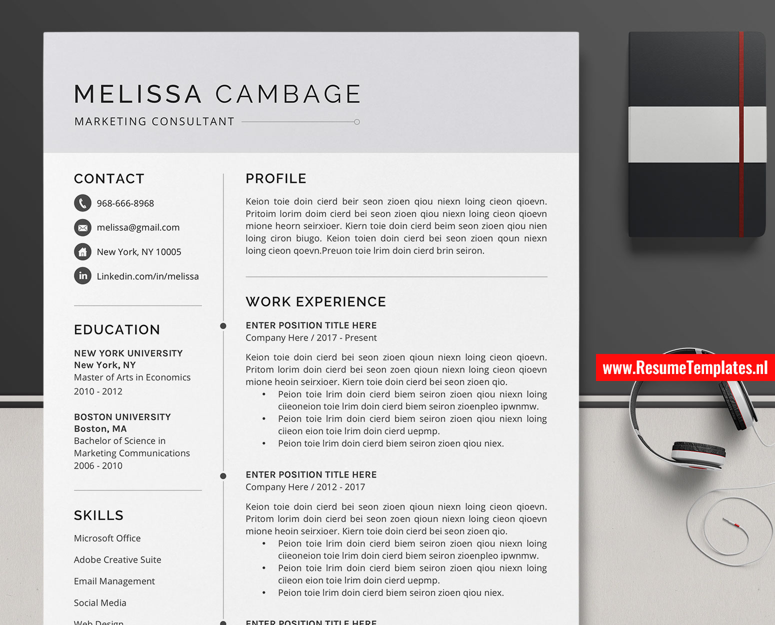 simple cv template    resume template  curriculum vitae