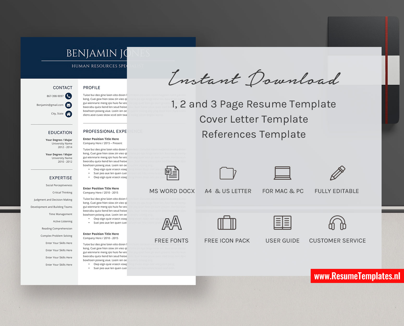 Cv Template Resume Template For Ms Word Professional Resume